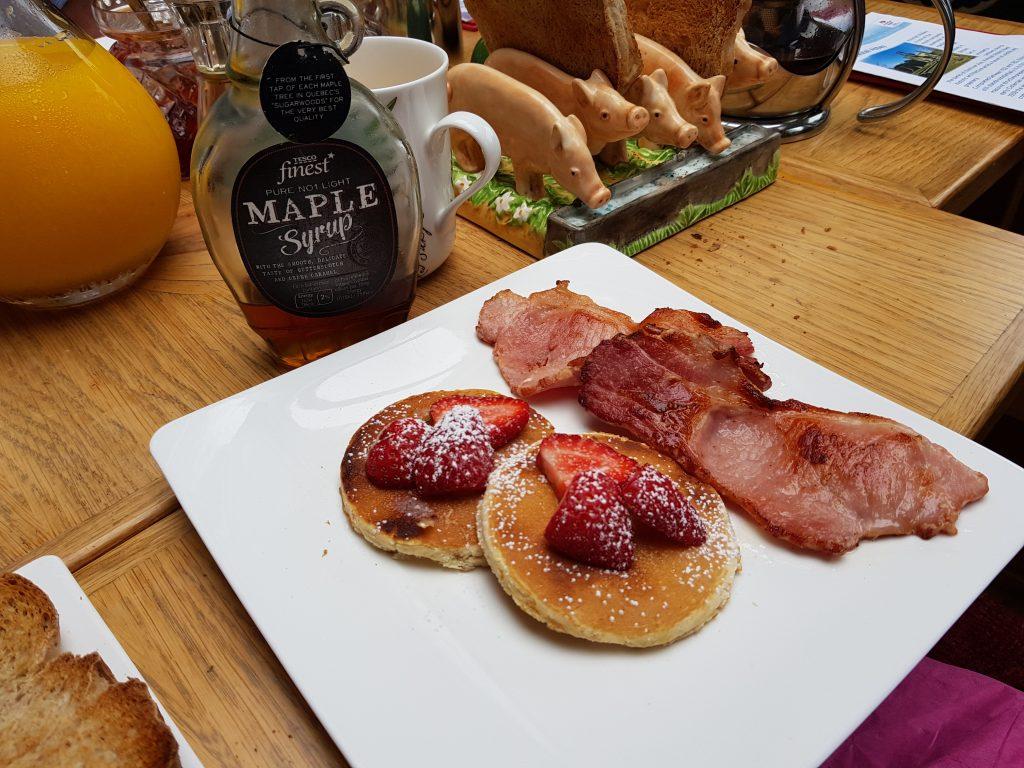 Breakfast Lady Teal