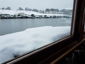 Snow and ice on lady teal